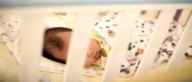 Genova, il neonato abbandonato in una scatola: La mamma ci ripensa e va dai carabinieri