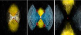 Svelato il mistero dei raggi gamma della nova V 959 Mon