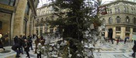 Vandali contro gli alberi di Natale a Napoli : Le baby gang sotto accusa