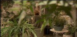 Anticipazioni Il Segreto | Video Mediaset Streaming | Puntata Oggi 5 Marzo 2015