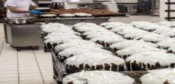 Fabbrica di panettoni Torino : 23enne muore schiacciato