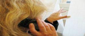 Ancona, moglie scopre dopo la morte del marito il tradimento : Pedina l