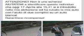 Monza, posta su Facebook le foto del ladro : Aiutatemi, garantisco ricompensa