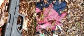Udine, cerca i funghi ma fa una scoperta choc : Lo scheletro del poliziotto scomparso Gunnar Illing Gottfried