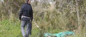 Ostia : Ritrovato cadavere nella pineta con ferite alla testa