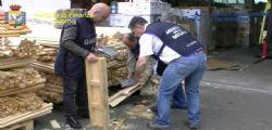 Droga Livorno : Sequestrati 17 kg di codeina nel porto