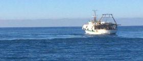 Corea del Sud, scontro tra peschereccio e petroliera : Almeno 7 morti e 2 dispersi