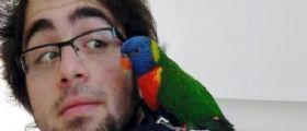 Domenico Maurantonio morto in gita:  I risultati delle analisi hanno rivelato che aveva bevuto troppo