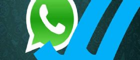 WhatsApp   Dopo la spunta blu nuovo ko alla privacy : ecco come sapere se il messaggio è stato letto