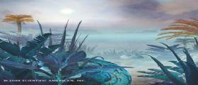 Fotosintesi : strategie di vita replicabili su mondi extraterrestri