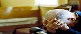 Venezia | Anziano raccoglie rami secchi al parco : Consigliere M5s lo fa denunciare per furto