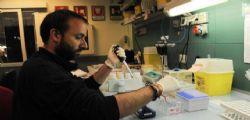 Allerta meningite : Casi in Marche e Sicilia