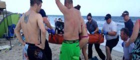Stati Uniti , 17enne attaccato da uno squalo : Gli ha morso le gambe