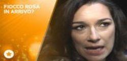 Alena Seredova è incinta?