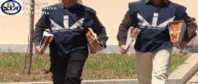 Blitz Anti Camorra a Napoli : Sgominato il clan Gionta, 14 arresti