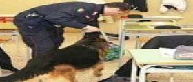 Spaccio e droga vicino scuole in Campania : Un arresto e 11 persone ai domiciliari