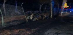 Grosseto, auto contro un pino : tre morti carbonizzati