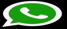 Whatsapp : in arrivo le chiamate VoIP per gli utenti Android