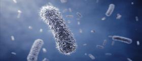 I metanogeni potrebbero sopravvivere in condizioni marziane