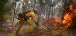 Incendi Cile : Distrutti 400.000 ettari di terreno