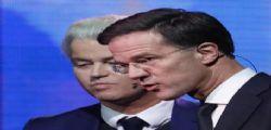 Elezioni Olanda, vittoria per i liberali di Rutte - Stop ai populisti