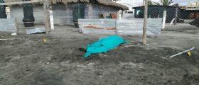 Ostia, trovato cadavere in riva al mare : Era quasi coperto dalla sabbia