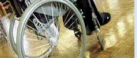 Truffa a Ferrara : Invalido al 100% su sedia a rotelle beccato mentre annaffia