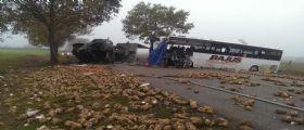 Francia, scontro tra un pullman scolastico e un camion : Almeno un morto, sul bus circa 30 bimbi