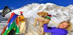 Rupee : il cane che ha accompagnato la padrona sull