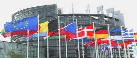 Risultati Elezioni Europee 2014 : Speciale Diretta Tv e Streaming Rai con Porta a Porta