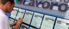 Naspi : Via al sussidio di disoccupazione per chi ha perso il lavoro