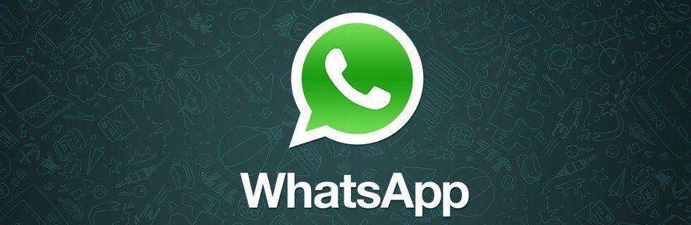 WhatsApp: Nuovi Termini di Servizio e Privacy