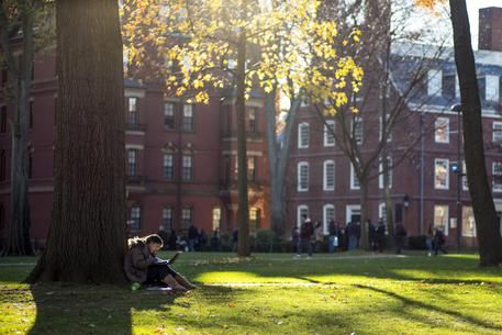 L'università di Harvard ammette : Presi 9 mln da Epstein