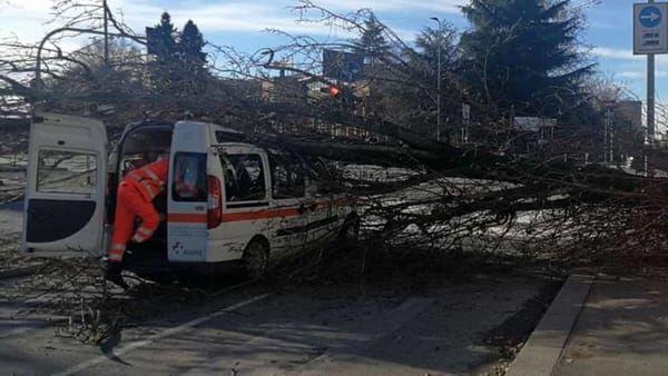 Albero crolla su un'ambulanza della Croce Verde a Trezzano : Tre volontari feriti