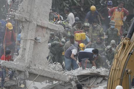 Terremoto Messico : Estratta bimba viva sotto macerie scuola