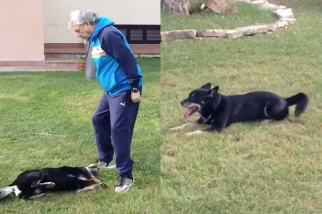 L'amico mio più grande! Il cane di Nino D'Angelo è morto