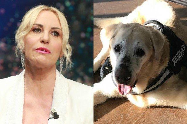 Antonella Clerici piange a La Prova del Cuoco per la morte del cane Oliver