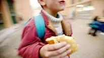 Scuola, torna tra i banchi il cestino preparato dalla mamma : La mensa non è un obbligo