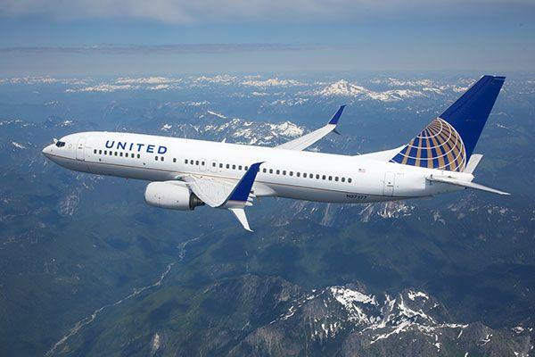 United Airlines : cucciolo di 10 mesi muore su un volo rinchiuso nella cappelliera