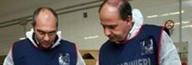 Uova al Fipronil : sequestrate 15mila galline a Viterbo e Ancona