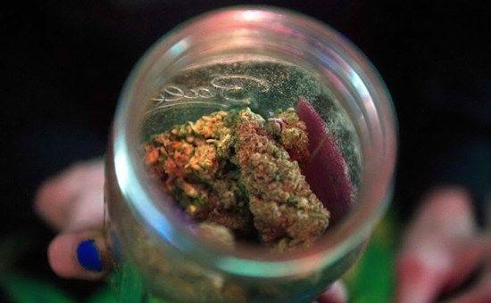 Canada : Si del Senato alla legalizzazione della marijuana, si attende il voto della Camera