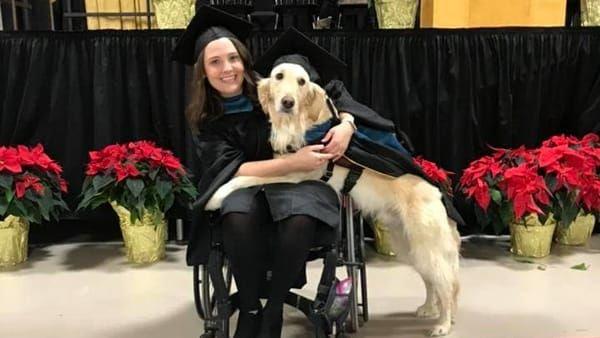 Laurea ad honorem per il cane Griffin! Ha aiutato a studiare Brittany