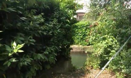 Bassano del Grappa : trovato morto nel canale il bimbo di tre anni scomparso
