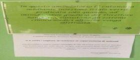 Milano : Il manifesto di un veterinario diventa virale per le richieste di eutanasia