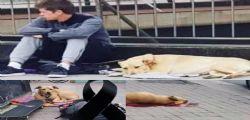 Stava solo abbaiando! Poliziotto spara e uccide il cane di un senzatetto