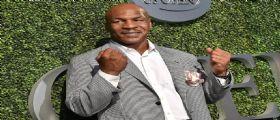 Mike Tyson: Dal ring alla coltivazione di marijuana a scopo ricreativo