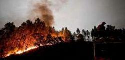 Incendio Portogallo : Rogo nei boschi a Pedrogao Grande, almeno 57 morti