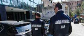 Truffa Sanità Roma : 14 arresti all