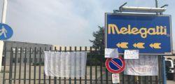 Melegatti : Gruppo Hausbrandt salva le colombe per Pasqua
