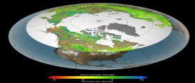 Clima effetto serra : aumenta la vegetazione delle zone artiche polari